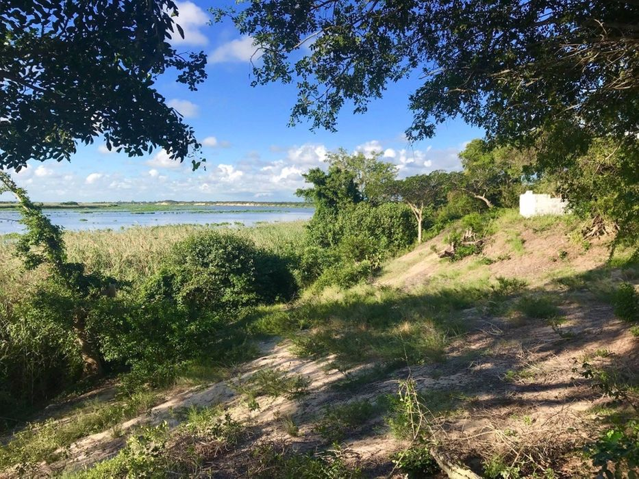 Macaneta River Frontage Property/490hectares Marracuene - imagem 7