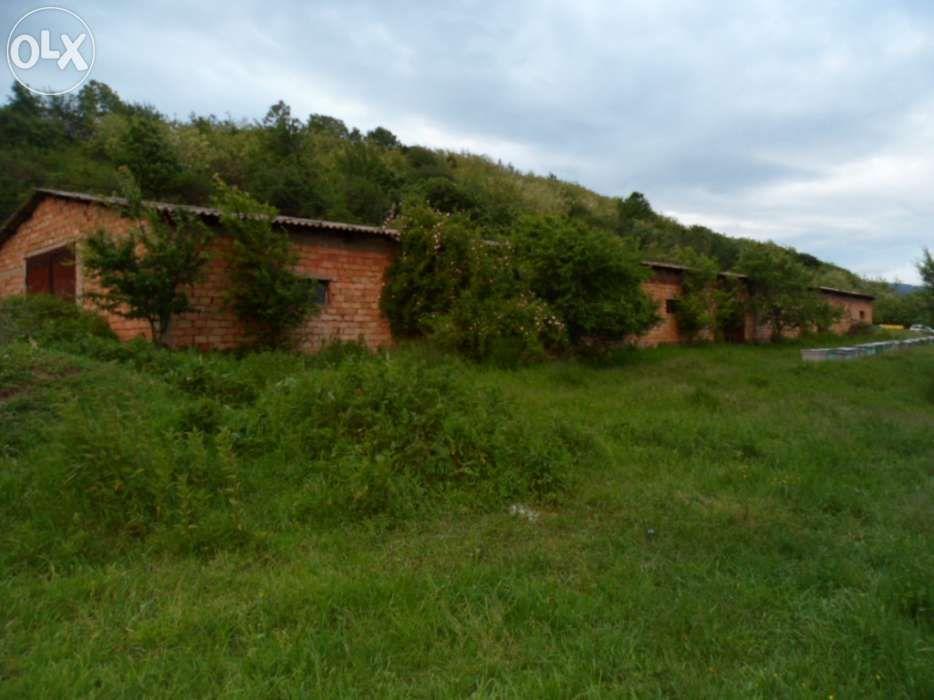 Vanzare  terenuri agricol Hunedoara, Bosorod  - 10000 EURO