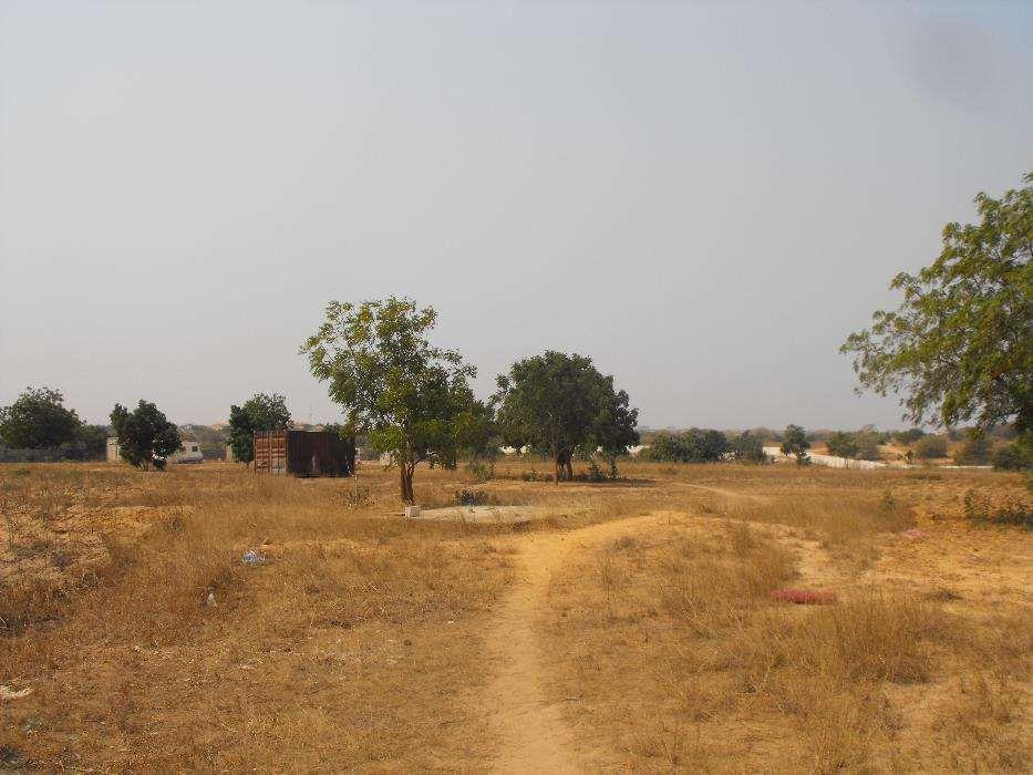Terreno Com 4 hectares