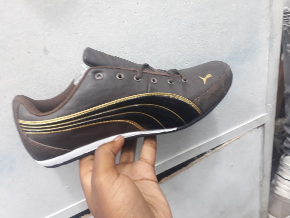 Puma race brown
