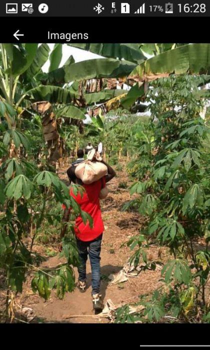 Vende-se esta Quinta no Bengo, de 10 hectares