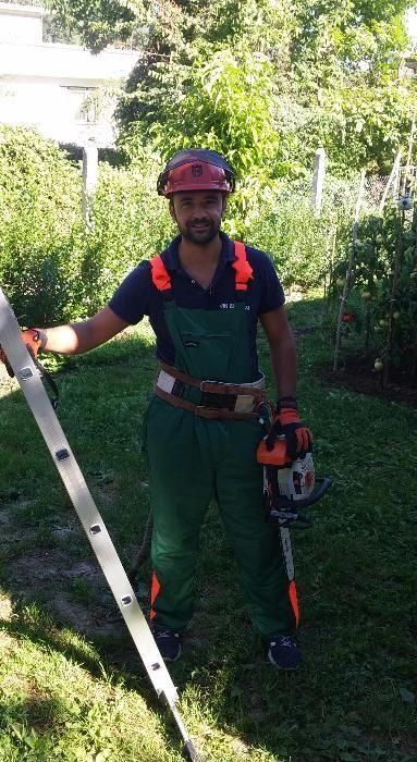 Рязане и премахване на опасни дървета Пловдив