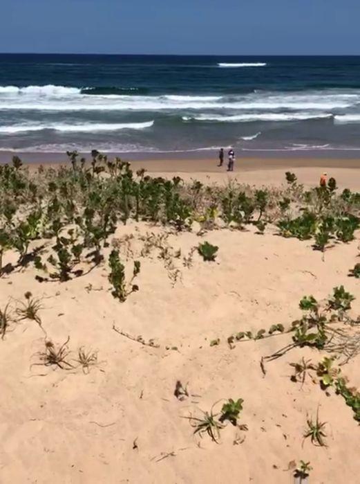 Vende-se propriedade Traspassa-se 4 hectares bem frente a Praia Duat Bilene Macia - imagem 8
