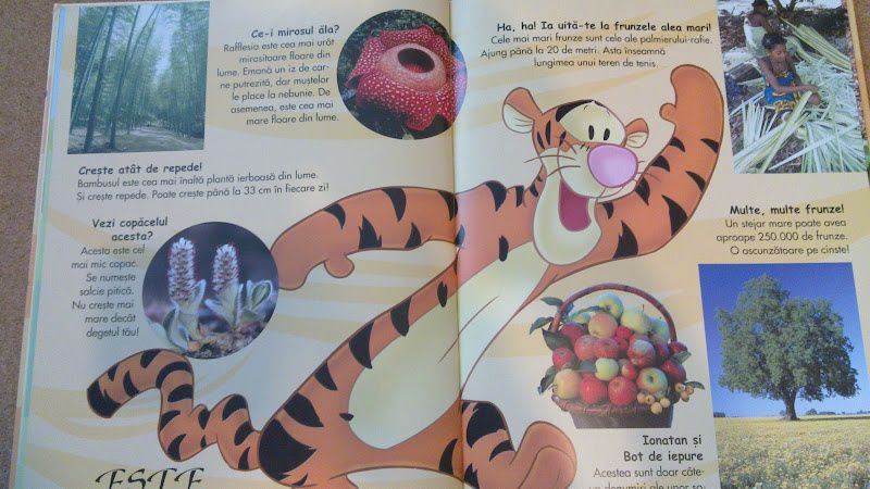 vand carti Disney - Prima mea enciclopedie