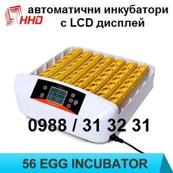Автоматичен заводски инкубатор. Инкубатори за пилета с LCD дисплей.