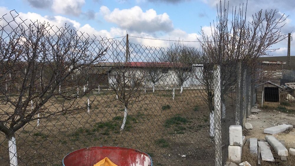 Vanzare  terenuri constructii Constanta, Albesti  - 27000 EURO