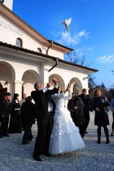 Професионален сватбен фотограф,календари 2018 г., луксозни,многолистни