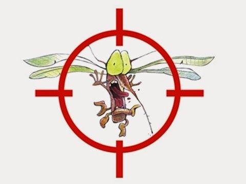 Nosso alvo sao os mosquitos