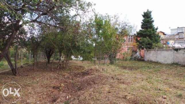 Почистване на дворни места и вилни имоти. гр. Варна - image 4