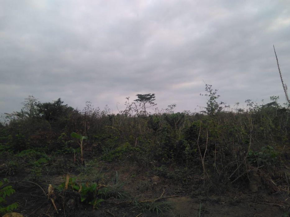 Terreno no Zongolo