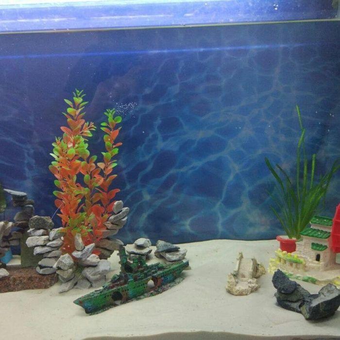 Кварцевый песок для аквариума и террариума