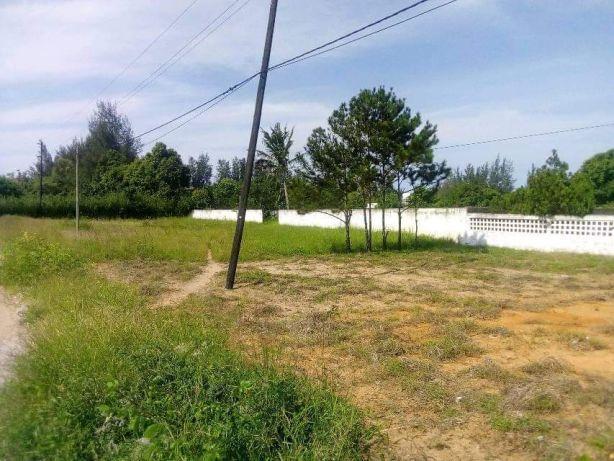 Romao 50X150.Vedados. Maputo - imagem 1
