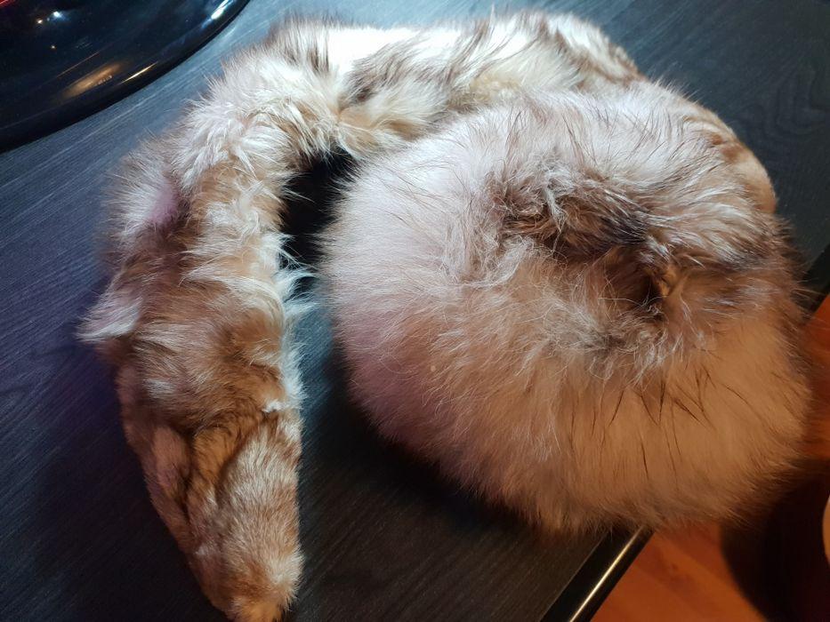 Caciula si guler din blana de vulpe polara naturala.
