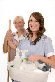 Temos para si Empregadas domésticas e diariastas