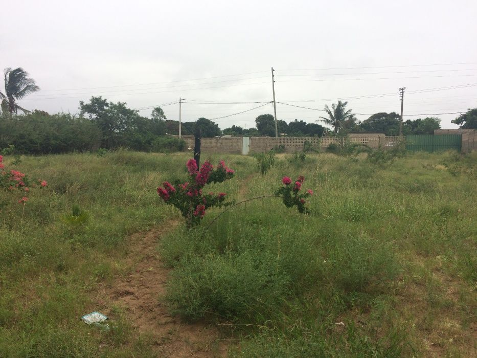 Romao 50\80 Vedado a BERMA DA ESTRADA Rua da Linha Ferrea z.Vip* Maputo - imagem 3