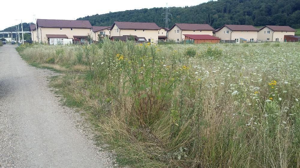 Vanzare  terenuri agricol Cluj, Gilau  - 0 EURO