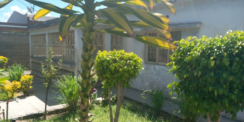 Arrendo casa independente no choupal tipo3 Bairro do Jardim - imagem 1