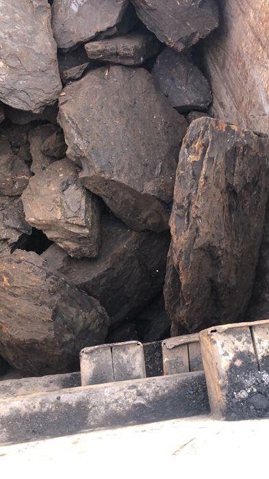 Cărbune lignit