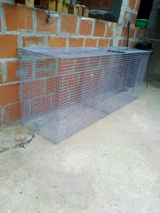 Venda de gaiolas por encomenda