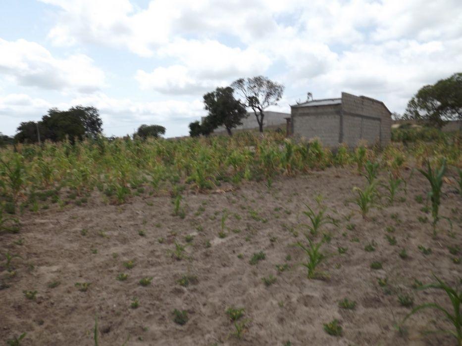TRENSPASSA-SE: Propriedade de 7ha na berma da EN1, Bobole, Marracuene
