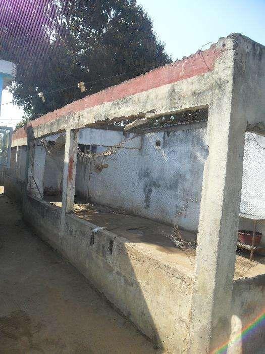vende-se casa no bairro patrice Lumumba Bairro Central - imagem 4