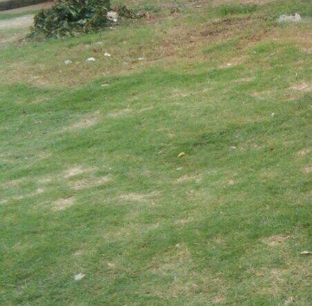 Vendo terreno, ntaka proximo 150m da estrada circular 1a Rotunda,20x40