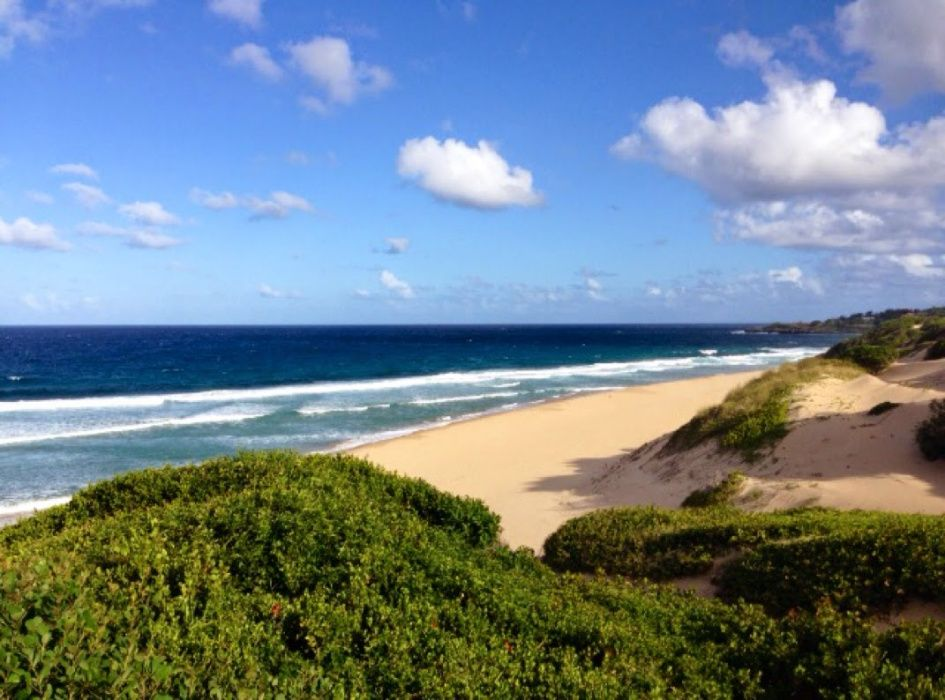 Trans passe de terreno na praia do tofo