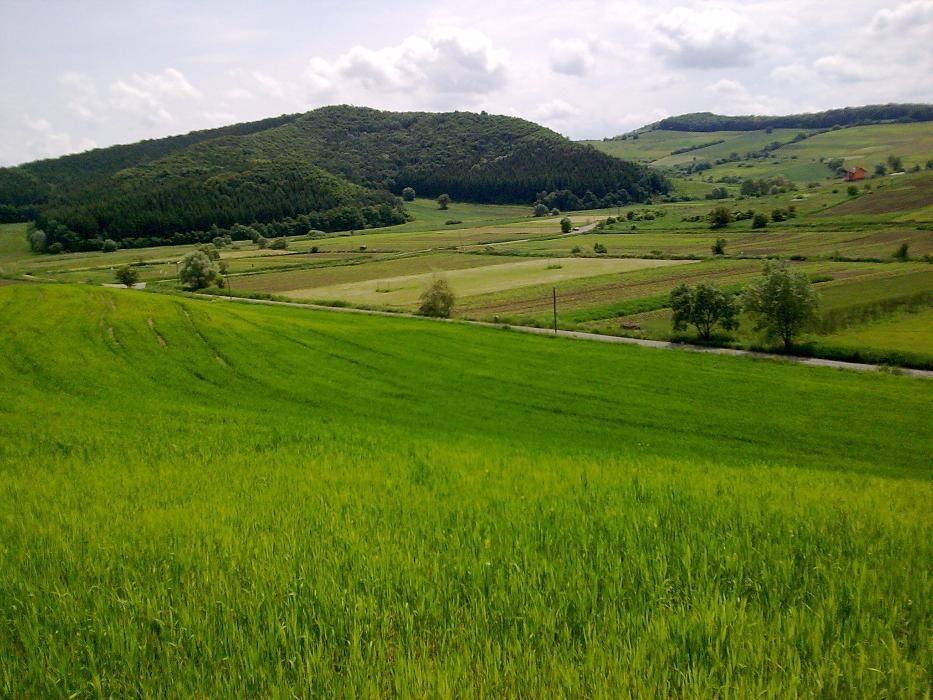 teren intravilan Satul Tofalau