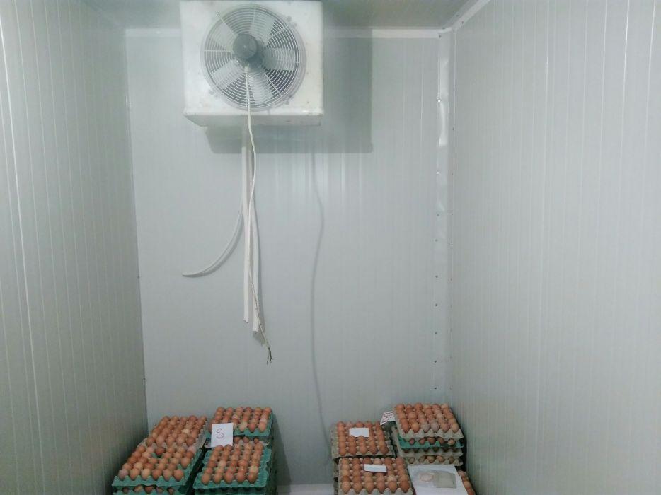 Confectionari incinte frigorifice