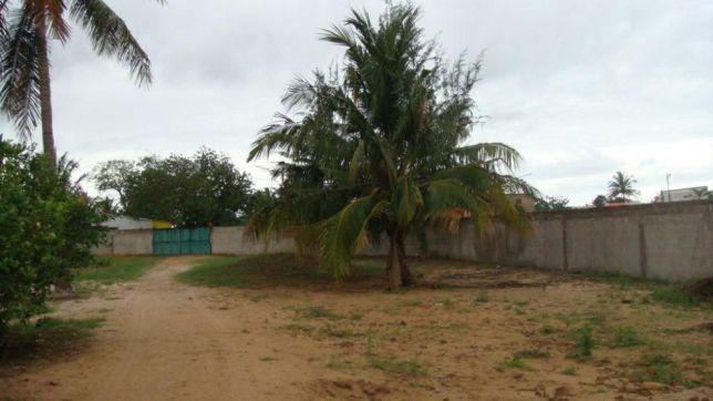 .5Hectares no Bairro Benfica a berma da estrada Av.Mocambique
