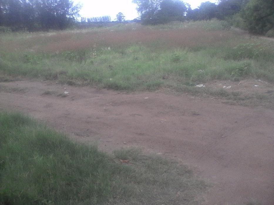 87 ha pra agricultura em Moamba por apenas 8 milhoes de mt