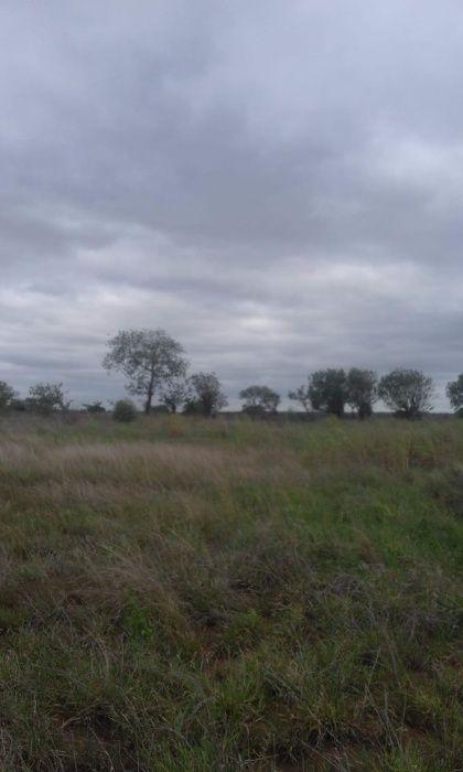 A venda espaço com rio na margem 5 hectares , para machamba ou outro