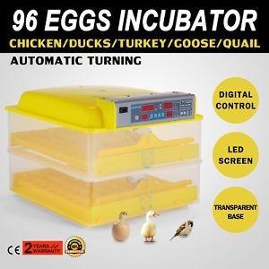 Incubadora de 96 Ovos