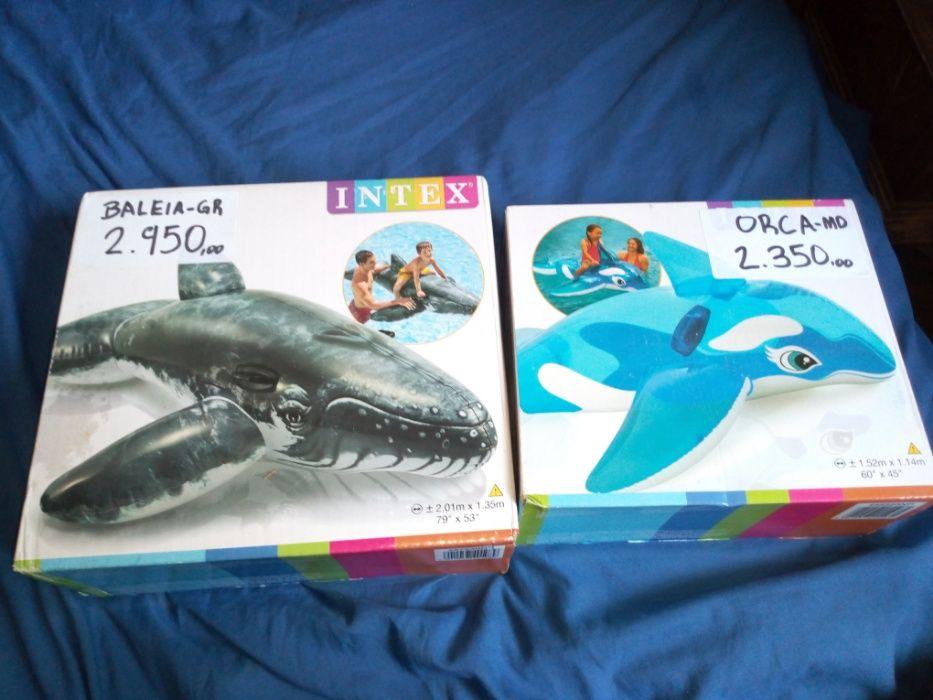 Boias gigantes/baleia