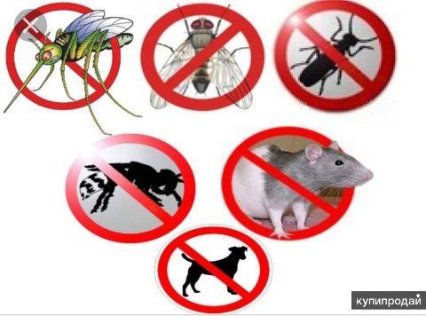 уничтожение КЛОПОВ, тараканов. Гарантия 1 год! ПО Регламенту СЭС!