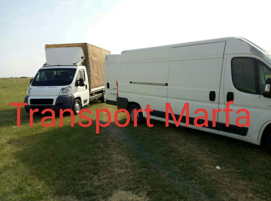 Transport marfa, mutari mobilă, frigider