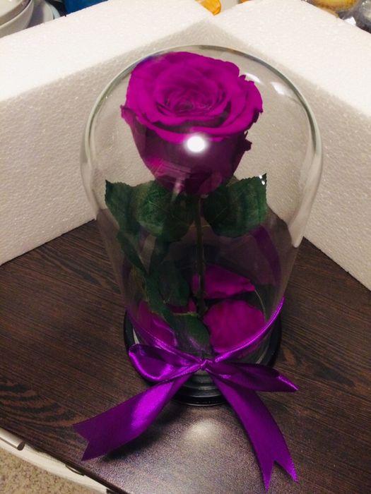 Trandafir criogenat conservat. Ideal pt Cadou onomastic aniversar
