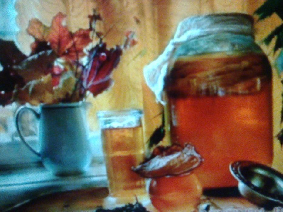 Гриб комбуче или чайный гриб