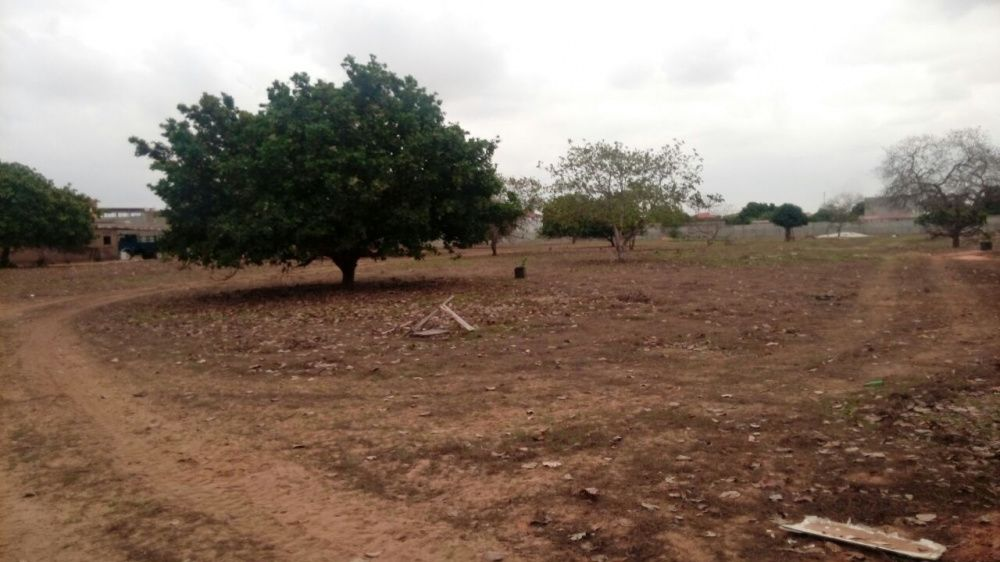 Viriato/ imobiliária & Corritor de imóveis / vende-se uma Fazenda