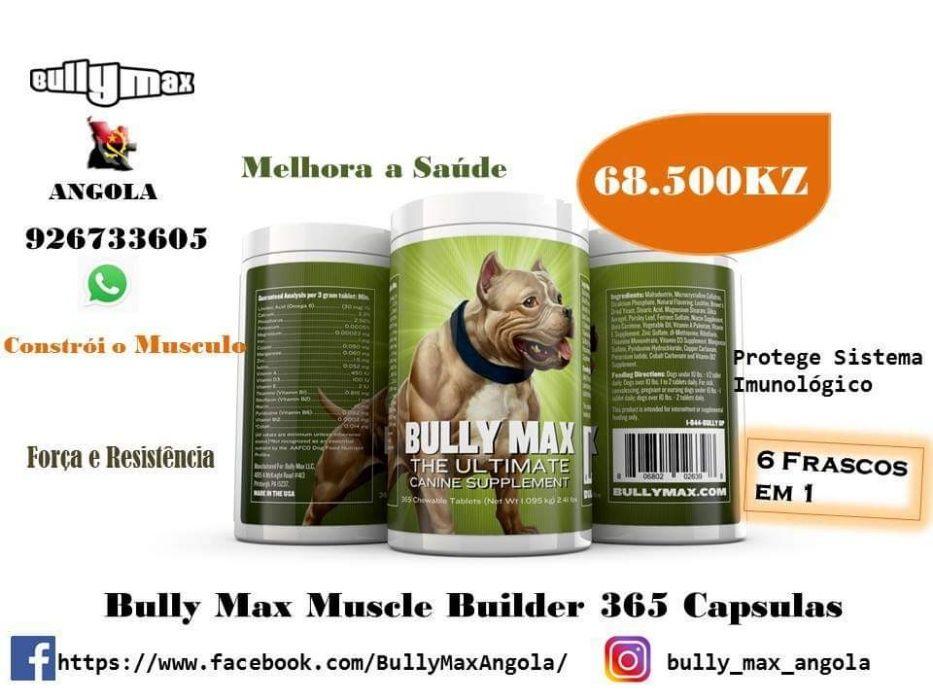 Bully Max Frasco com 365 Comprimidos
