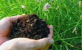 Органическое удобрение, компост, объем 60л.