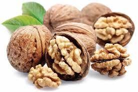 Продавам орехи гр. Балчик - image 2
