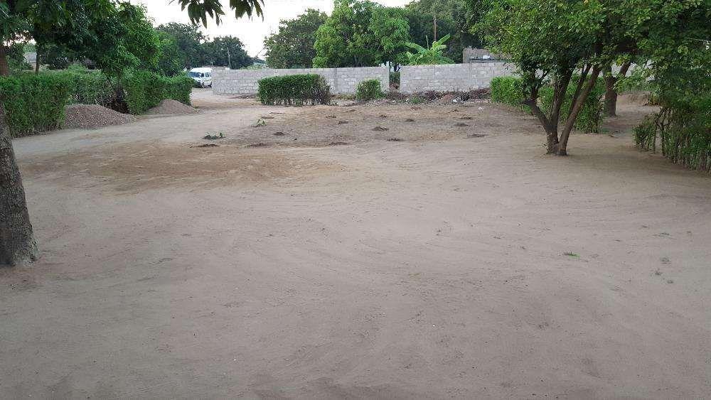 TSALALA-Zona localizada, agua,luz,escola,hospital,estrada,15/30PARCLDO Machava - imagem 1