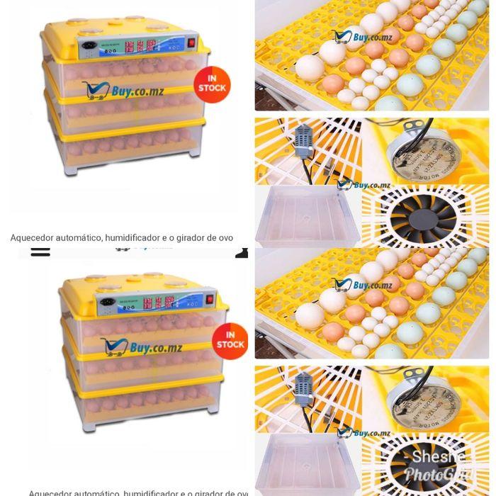Chocadeira para 72 ovos de galinhas/288 de cordonizes.