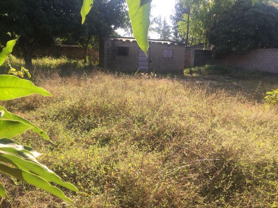 casa tipo 3 com dependencias,capoeiras espaço de 2 hectares Albasine