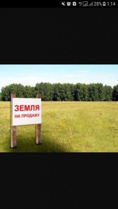 Продам участок 5 Гектаров; целевое назначение придорожный сервис.