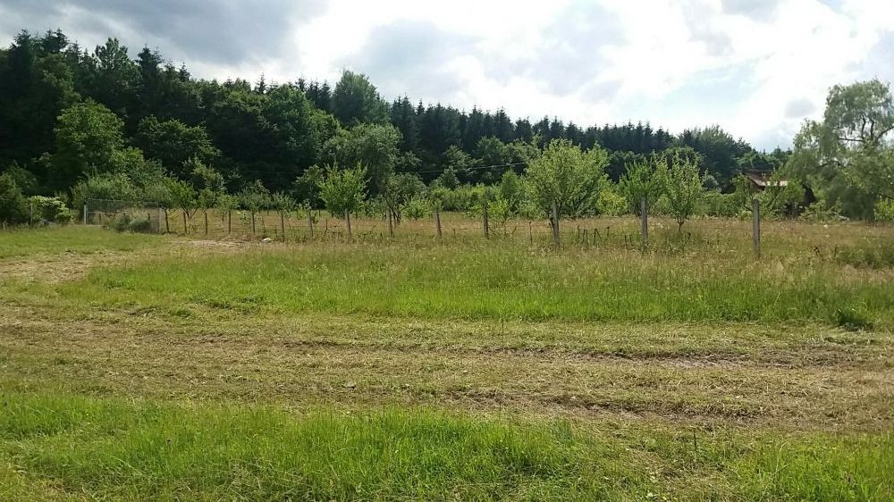 Vanzare  terenuri constructii Sibiu, Tocile  - 17500 EURO