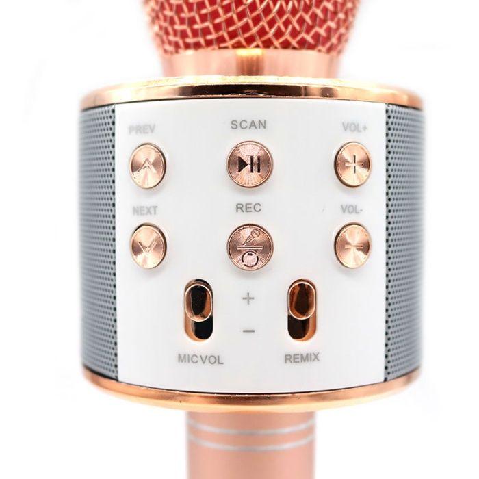 Microfon wireless sistem karaoke profesional cu boxe &Bluetooth WS-858