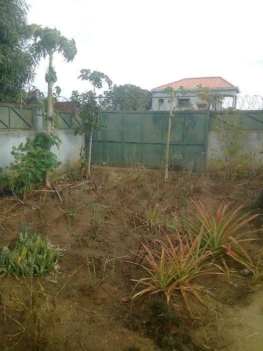 vende-se ou troco um quintal em Benfica na rua 2 zona verde já vedado