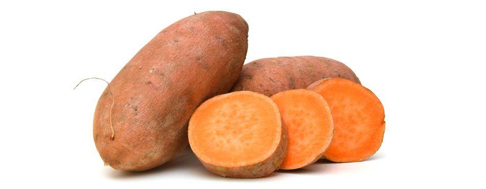 Разсад от Сладък картоф / Батат (Ipomoea batatas)